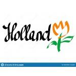 Holland Tulips Garden