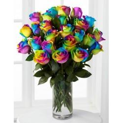 Twenty Rainbow Rose in Vase