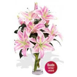 4 Oriental Lily Vase Bouquet