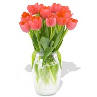 12 Tulips Bouquet