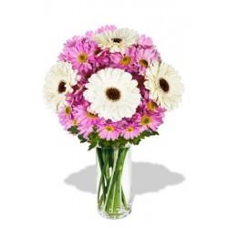 8pcs Gerberas and Chrysanthemum Vase Bouquet